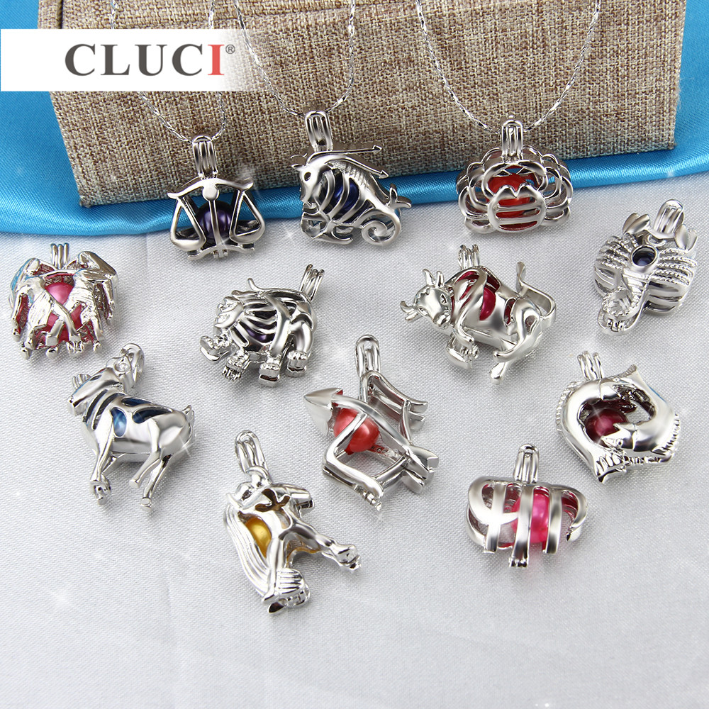 CLUCI 12pcs/set silver color 12 Signs Constellation Zodiac Gifts Charms cage pendants lockets for women/men necklace making