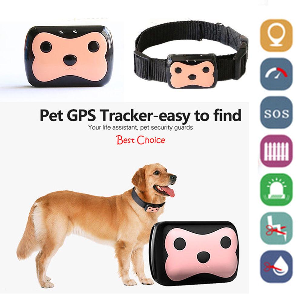 APRICOTCAR GPS Tracker Avec Col Mini Pet GPS Tracker Pour Animaux de Compagnie Chat Chien GPS + LBS Emplacement Livraison APP LED indicateur Étanche
