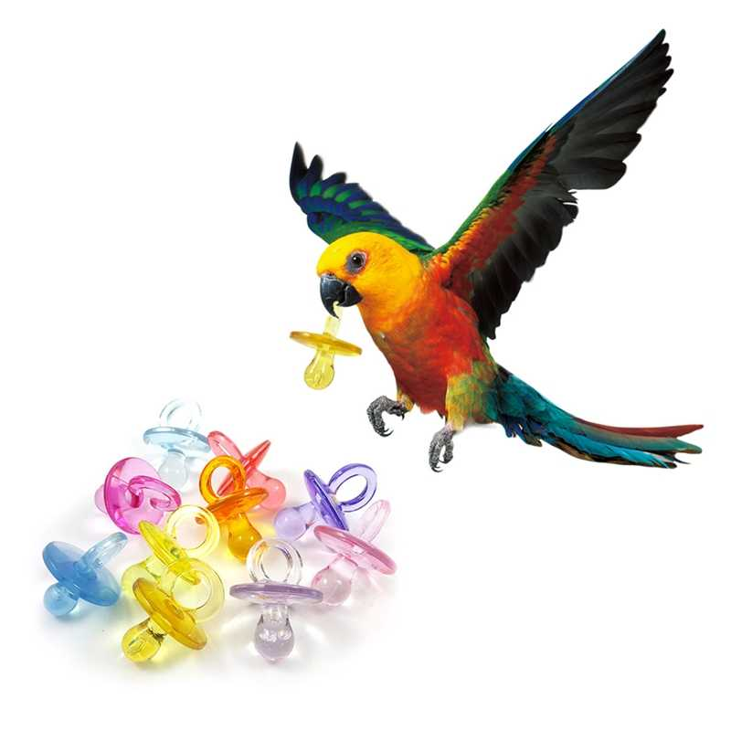 Random Colors  Pet Bird Toy Supplies Parrot And Other Animals Acrylic DIY Accessories Pacifier Toy With