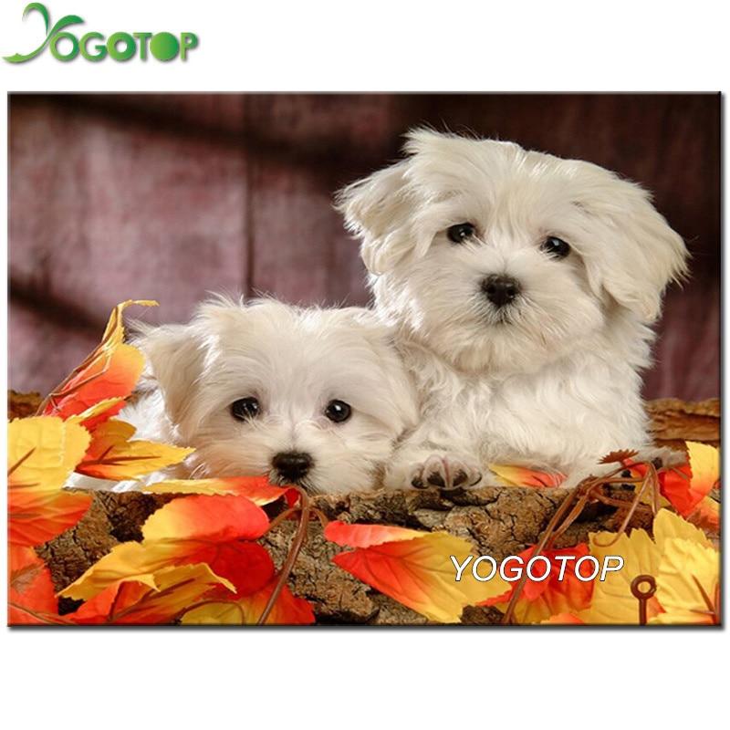 YOGOTOP 3D Diamond Painting Cross Stitch Maltese Dog Diy 5d Diamond Embroidery sale animal pet Full squareround drills YY429