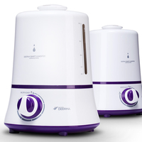 Family Expenses Mute Humidifier Bedroom Mini Air Conditioning Air Filter Office High Capacity Aromatherapy Machine