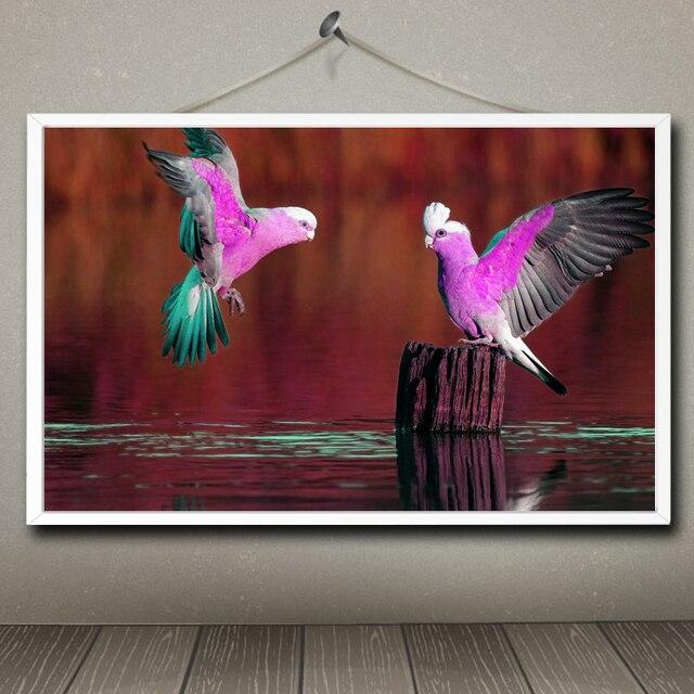 Cute Animals Series Art Silk Fposter Print Bird Parrot Picture Wall Home Decor 12x19 15x24 19x30