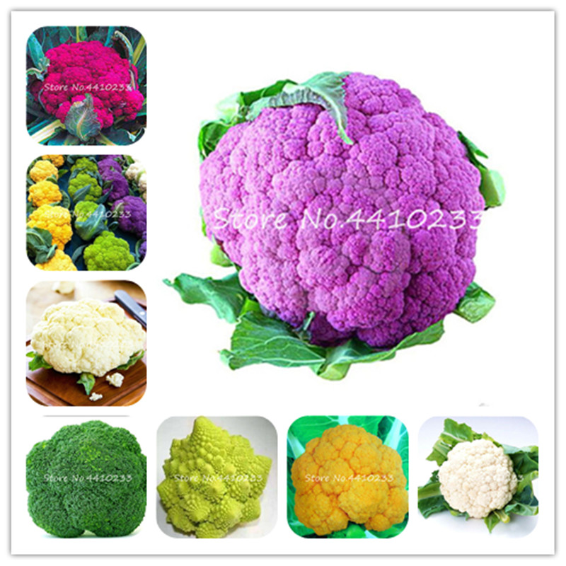 top 10 largest organic food coloring list and get free ...