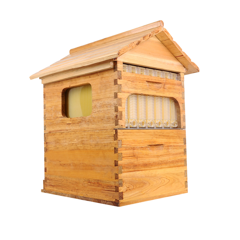 Flux ruche bateau libre intelligent automatique miel pour honey bee ruche honeycomb 4 cadres avec ruche colmena ruche flux d'automatisation kits