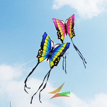 free shipping high quality lober butterfly kite 2pcs/lot with hand line hcxkites factory easy contrl ripstop nylon birds eagle