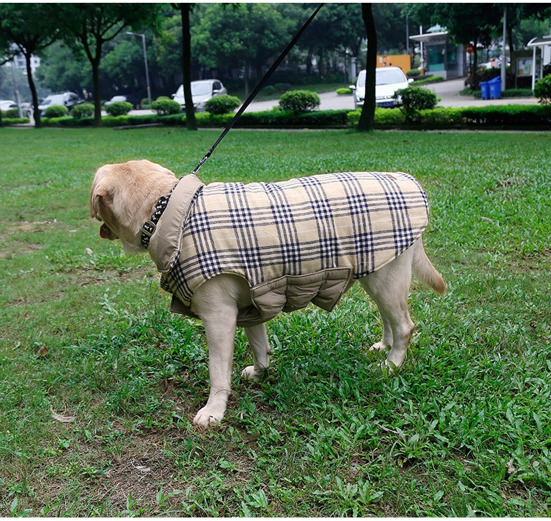 large dog clothes (13)