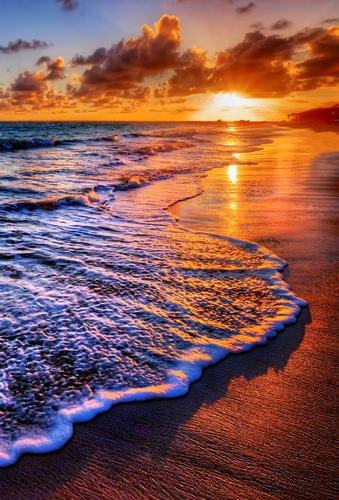 Us 419 Anti Piega Materiale Sfondo Bagliore Del Tramonto Sul Mare Spiaggia Photography Sfondo Per La Fotografia Sfondi Puntelli Hg 226 A In