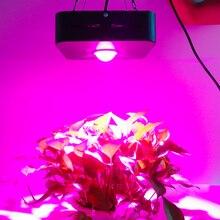 Светодио дный помещение медицина растения Вт 300 COB полный спектр растет свет с объективом для 150 Вег и цветок в парниковых палатка
