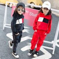 Spring Girls Clothing Set Kids Suit Set Casual 2pcs Fleece Sport Suits Sweater Pants Fleece Toddler
