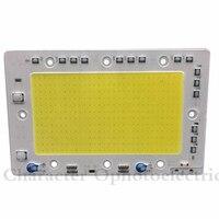 5 PCS 150 W Chip de COB LEVOU 220 V Alta lumen Lâmpada LED lâmpada À Prova D' Água IP65 Luz Fichas de Entrada IC Inteligente Para DIY Holofotes Holofote|ic smart|ic led|ic chip -