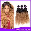 Ombre Brazilian Virgin Hair 4 Bundles 7A Unprocessed Brazilian Kinky Curly Human Hair Extension Ombre Brazilian Hair Curly 1B 27