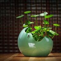 Meaty plant flowerpot Ceramic Vase creative Indoor hydroponics flower pot office Home decorat Porcelain Vase Furnishing Articles