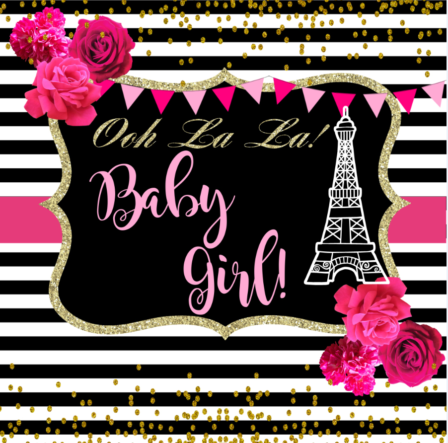 8x8ft Pink Flowers Eiffel Tower Gold Coins Black Stripes