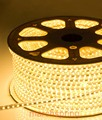 3528 LED 5M 10W/5M LED strip Waterproof  220V 60LEDs/M Strip Light + Controler + Free ship