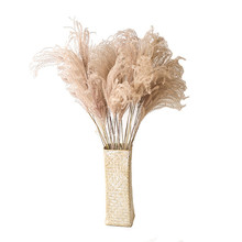 10pcs/20pcs  Decor wedding home small pampas reed grass dried natural phragmites flowers bouquets 3 colors