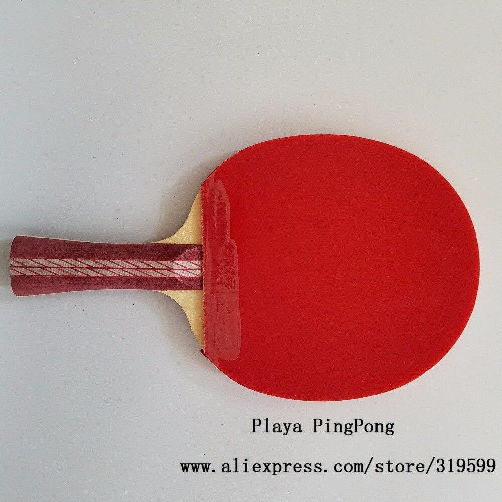 Dorigine DHS 4002 4006 Raquette De Tennis Table Avec 4 Etoiles
