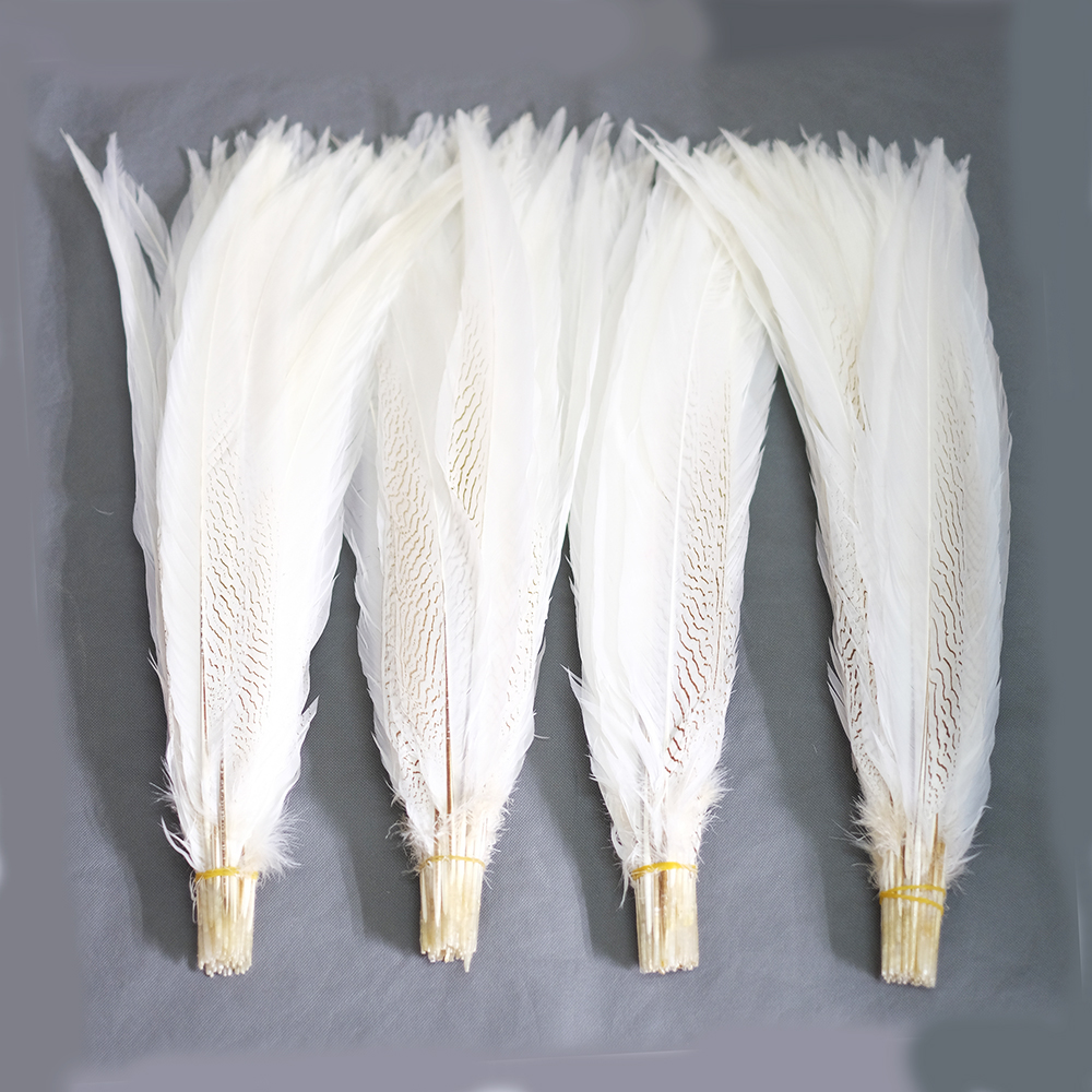 Hotsale 50pcs White Pheasant Silver Feather Tail 45 50cm Pheasant tails lady amhurst pheasant tail Feathers