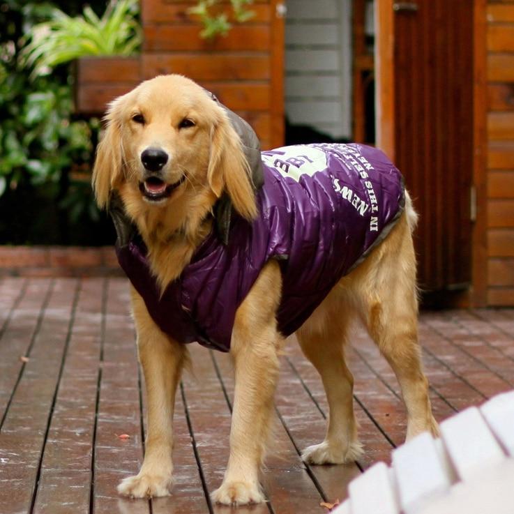 Labrador Golden Retriever Pet Hund Kleidung Winter Wasserdichte