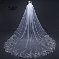 3 Meter Cathedral Wedding Veils Long Lace Edge Bridal Veil with Metal Comb