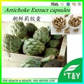 Factory Supply Natural 500mg*100pcs Artichoke Extract Chlorogenic Acid 10:1 best quality extract