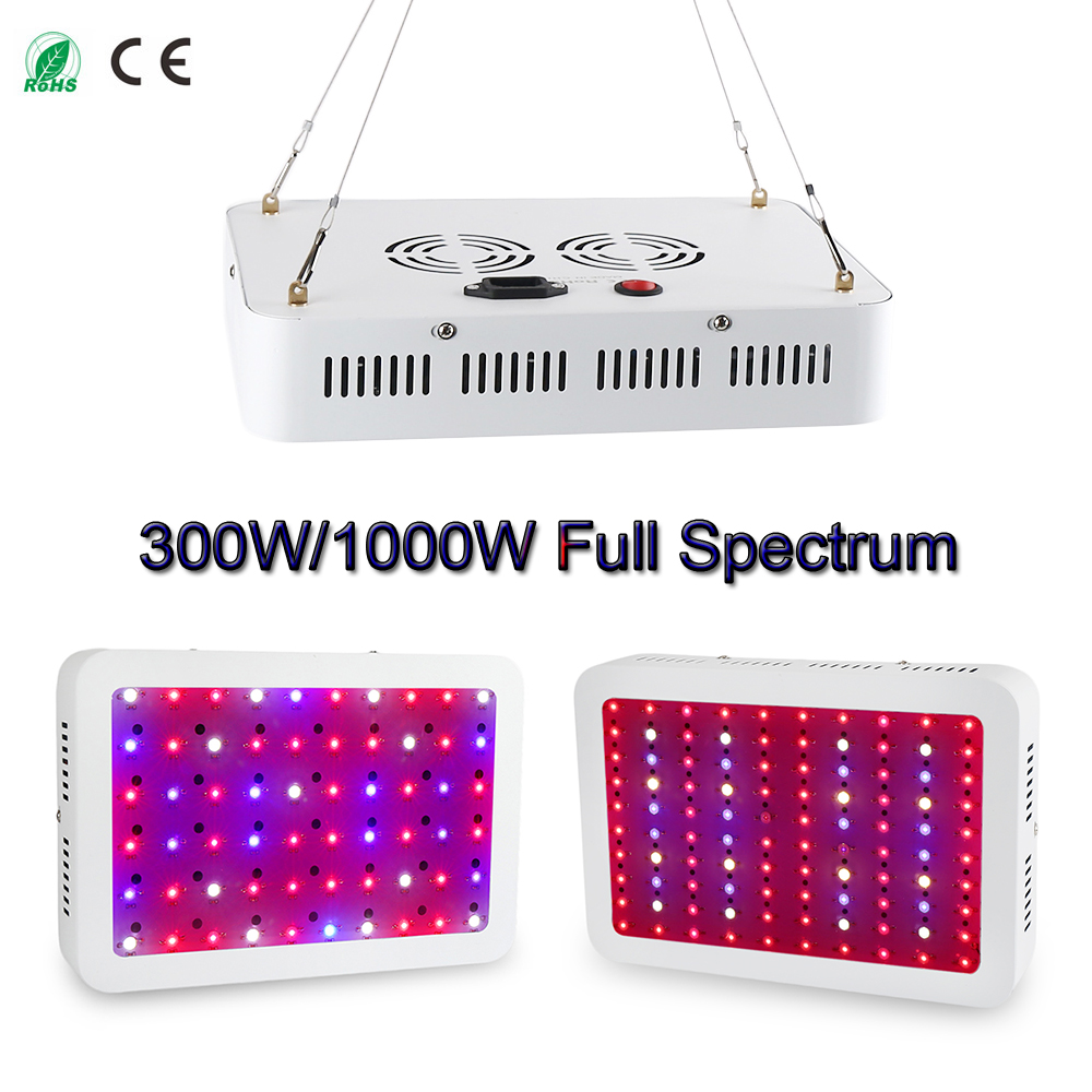 Double Chips Newest 300W 1000W LED Grow Light Full Spectrum For Indoor Plants and Flower Phrase with Very High Yield spanish phrase book