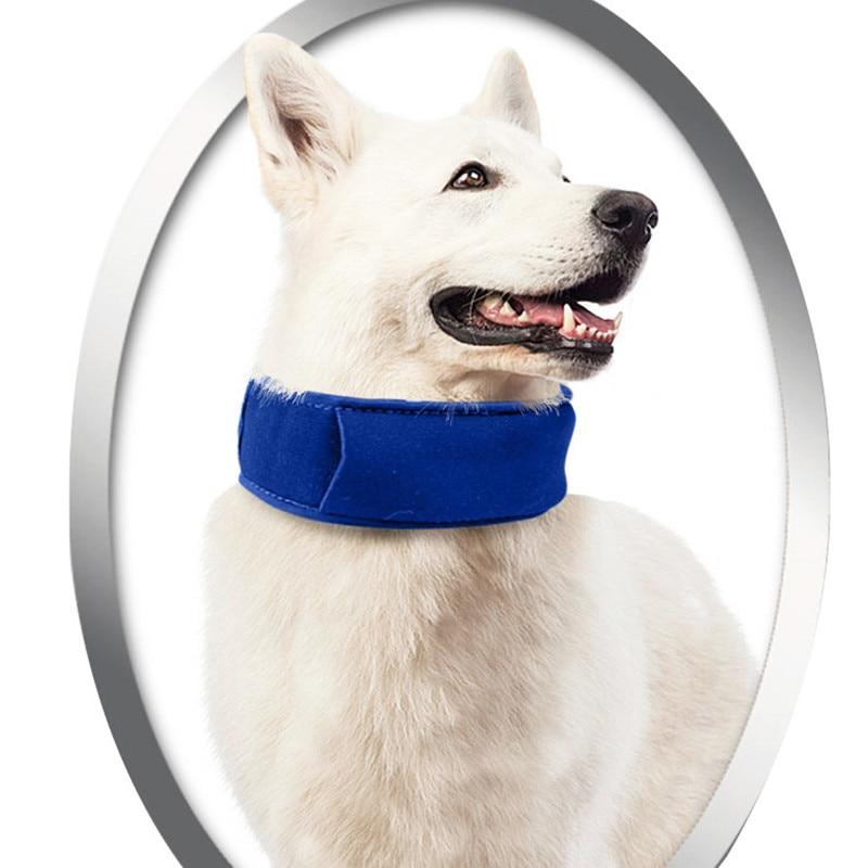 Sommar husdjur hund kyla halsband Nylon gel stor storlek krage sele - Produkter för djur - Foto 1