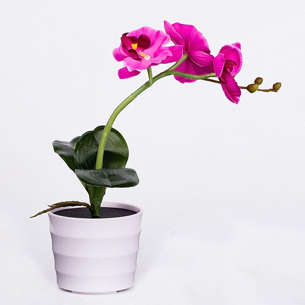 100% QualitäT Garten Outdoor Nachtlicht Solar Licht Led Dekorative Blume Hotel Topfpflanze Innen Gefälschte Phalaenopsis Energiesparende Büro Verhindern, Dass Haare Vergrau Werden Und Helfen, Den Teint Zu Erhalten