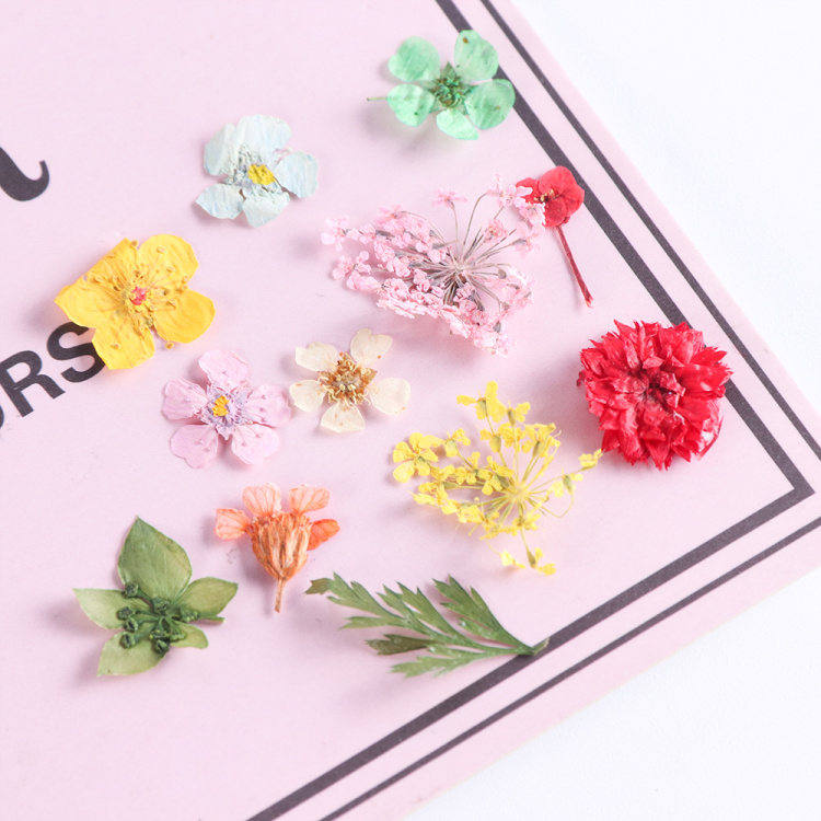 Dried Flowers Nail Art Decoration Natural Dry Floral Leaf DIY Sticker Beauty Jewelry Tips Colorful Nail Gel Ornaments 01 (3)