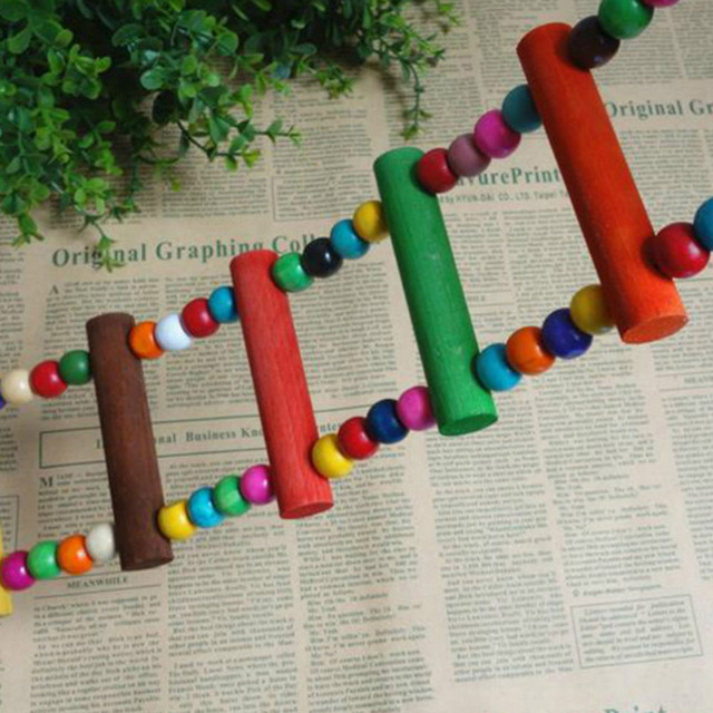 Colorful Birds Ladder