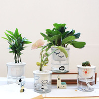 Automatic absorbent lazy person green planting ceramic flower pot cartoon Japanese creative multi meat flower pot