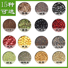 Healthy Vegetable Seeds ,Soilless Culture Water Culture Wheat Seeds ,grow on the papper