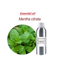 50 100ml/bottle Mentha Citrata Oil essential oil organic cold pressed vegetable plant oil Scraping, massage skin care