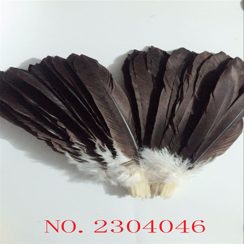 Z & Q & Y new natural scarce30 eagle feathers 40-45CM (16-18 inch) wings hair DIY collection fan production