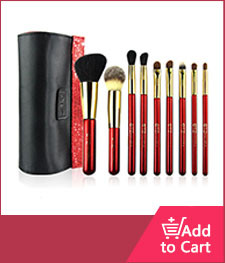 10pc brush