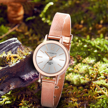 Retro Pattern Exquisite Watch Quartz Luxury Simple Classic Casual Women Gold Mesh Strap Ladies WristWatch Relogio Feminino