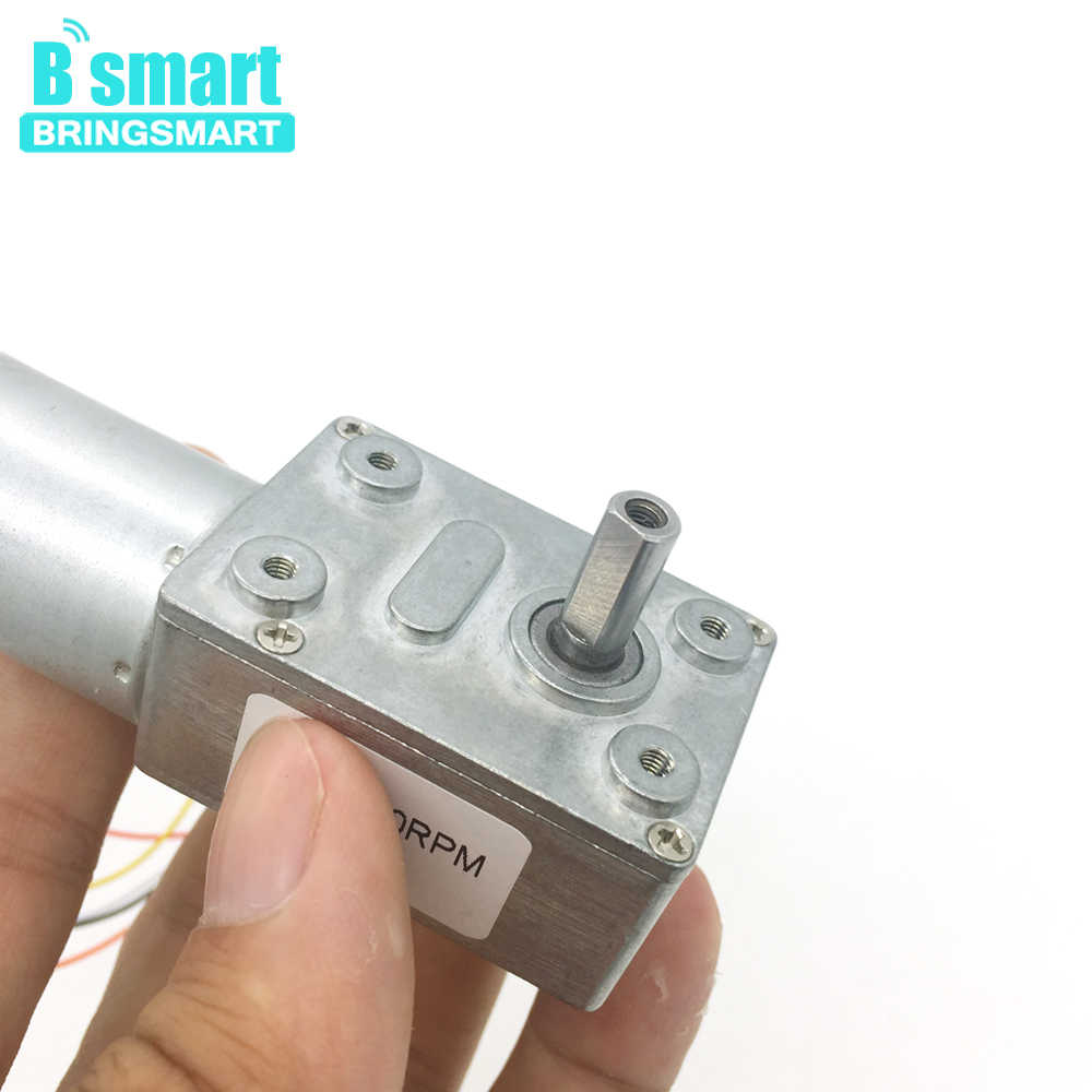 bringsmart jgy 2430 brushless 12 volt dc worm gear motor self lock reversible gearbox  [ 1000 x 1000 Pixel ]