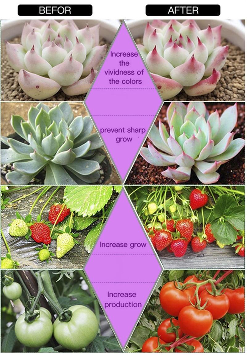 grow light-3