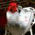 1 unids Diente de Almohadas De Peluche de Simulación Creativa Linda Sonrisa Dientes Suave Cojín Del Sofá Regalo Interesante decoración del Hogar