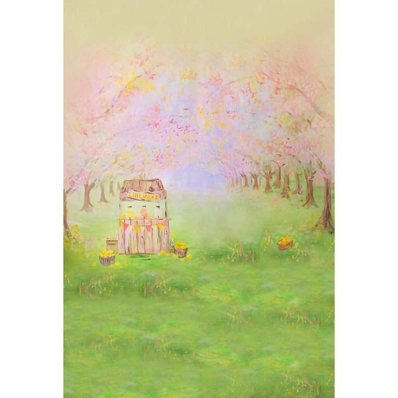 Personnaliser lavable rides livraison printemps arbres fairy land photographie décors pour enfants photo studio portrait milieux S-1205