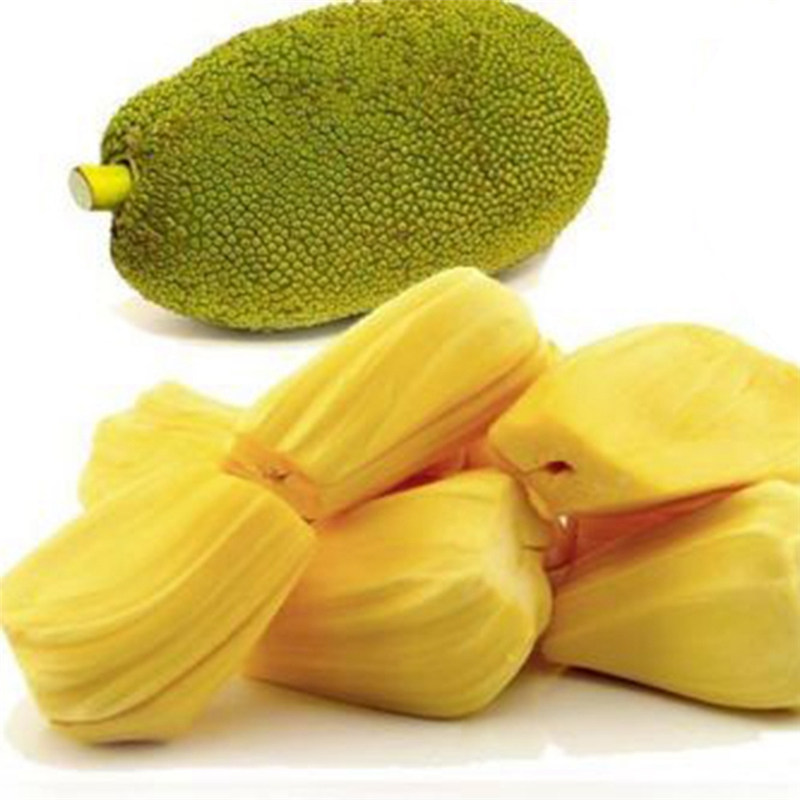 6Pcs/Bag Tropical Rare Giant Jackfruit Seeds Unique Fruits Plant Bonsai Pot  Seed Home Garden