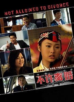 《不许离婚》2013年中国大陆电影在线观看