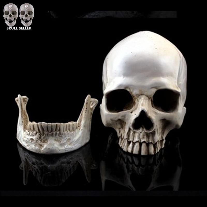 P-Llama Modelo de simulación 1: 1 Cráneo humano Resina Calaveras Mandíbula separada Decoración del hogar Terror Cranium Heads CrossBones