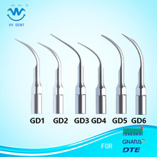 Ny 6Pcs / lot Ultrasonic Dental Scaler Tip GD1 GD2 GD3 GD4 GD5 GD6 Kompatibel med SATELEC / DTE / GNATUS Dental Laboratory Udstyr