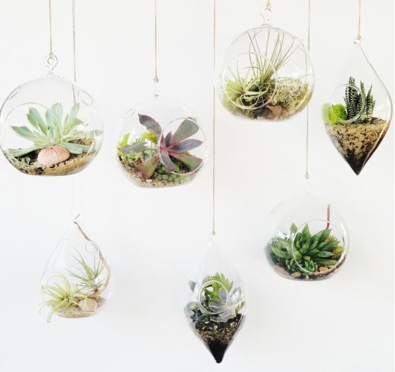Us 14 9 3pcs Set Hanging Glass Terrarium Kit Teardrop Air Plants Holder Bicone Planter Bonsai Hanging Candle Holders Home Garden Decor In Flower