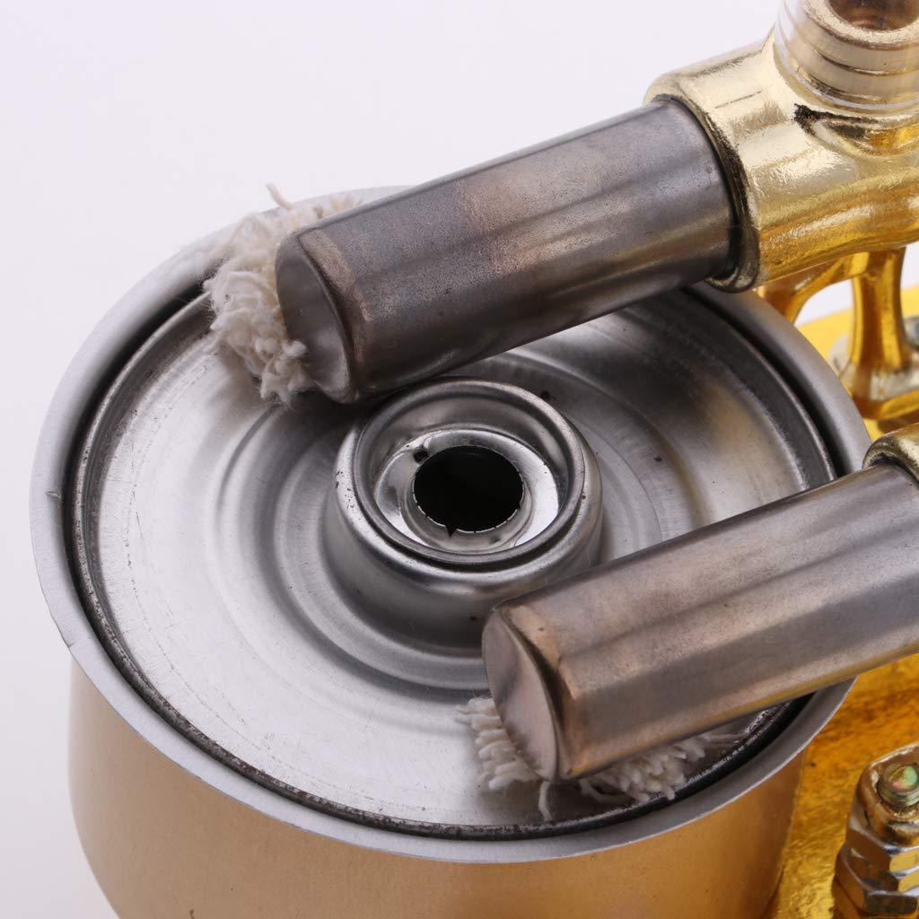 Air chaud 2 cylindres Stirling moteur générateur de vapeur modèle physique expérience Science apprentissage jouets éducatifs cadeau pour les enfants - 5