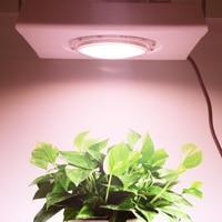 COB LED Grow Light 100W de espectro completo Fitolamp ultrafino resistente al agua para interior hidropónico hierbas planta lámpara flor más PPFD