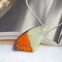 Фотография Hebomoia Glaucippe Real Butterfly Wings Resin 925 Sterling Silver Chain Choker Necklace Women Vintage Boho Jewelry Bohemian