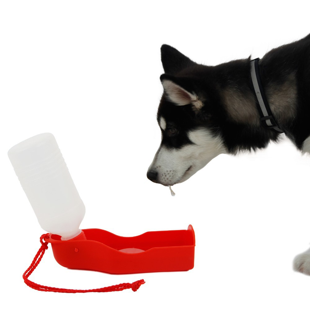 Dog's Portable Water Bowl