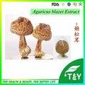 2016 new arrival produto de saúde natural Agaricus Blazei Murill P.E./Agaricus Blazei Murill Mushroom Extract 800 g/lote