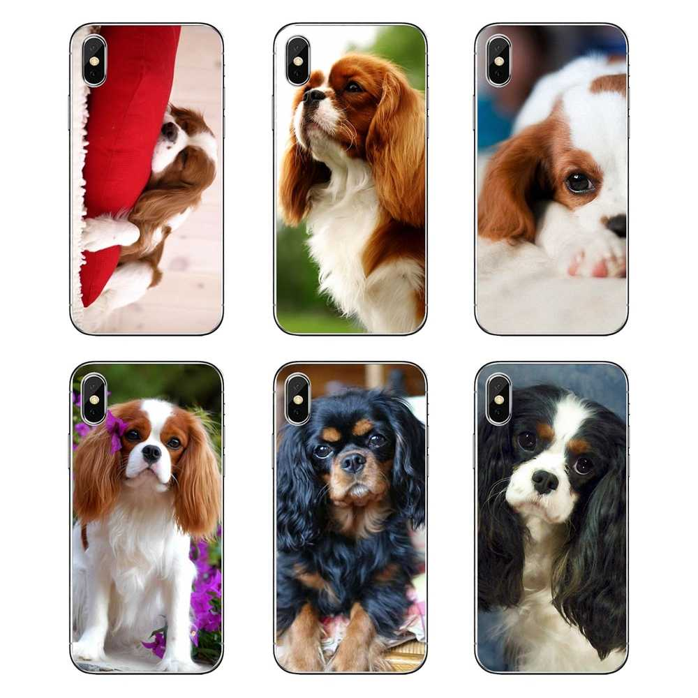 Voor Xiao mi rode Mi 4X S2 3 S note 3 4 5 6 6A por POCOPHONE F1 Mi 6 transparante TPU Covers Cavalier King Charles Spaniel hond puppies